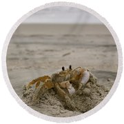 Sand Crab Round Beach Towel by Nelson Watkins