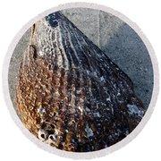 Sand Key Shell Round Beach Towel