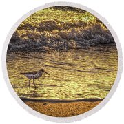 Sand Piper Round Beach Towel by Marvin Spates