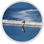 Sanderling 003 Round Beach Towel