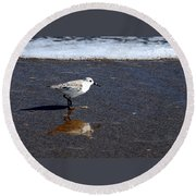 Sanderling 004 Round Beach Towel