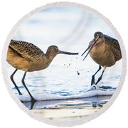 Sanderlings Playing At The Beach Round Beach Towel