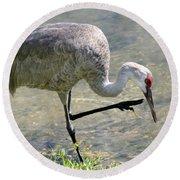 Sandhill Crane Balancing On One Leg Round Beach Towel by Sabrina L Ryan