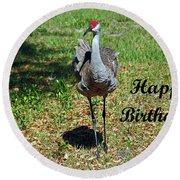 Sandhill Crane Birthday Round Beach Towel