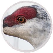 Sandhill Crane Eye Round Beach Towel