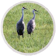 Sandhill Cranes In Wisconsin Round Beach Towel