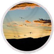 Sandhill Cranes In New Mexico Round Beach Towel