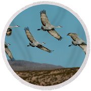 Sandhill Cranes Over Chupadera Mountains Round Beach Towel