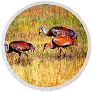 Sandhill Family Round Beach Towel