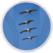 Sandhill In Fromation Round Beach Towel