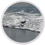 Sandpiper In The Surf Round Beach Towel