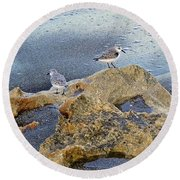 Sandpipers On Coral Beach Round Beach Towel