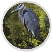 Sanibel Great Blue Heron Round Beach Towel