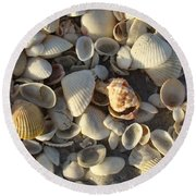 Sanibel Island Shells 3 Round Beach Towel