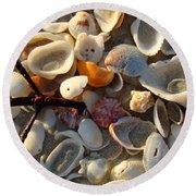 Sanibel Island Shells 6 Round Beach Towel