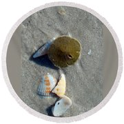 Sanibel Sand Dollar 1 Round Beach Towel