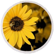 Santa Fe Sunflower 1 Round Beach Towel