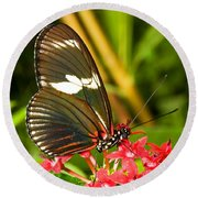 Sapho Longwing Butterfly Round Beach Towel