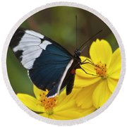 Sapho Longwing Yellow Oriented Round Beach Towel