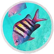 Sargeant Fish Round Beach Towel
