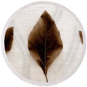 Sassafras Leaves In Sepia Round Beach Towel