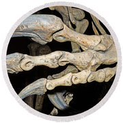 Saurophaganax Dinosaur Claw Fossil Round Beach Towel