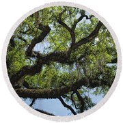 Savannah Live Oak And Spanish Moss Round Beach Towel