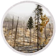 Sawback Burn, On Bow Valley Parkway Round Beach Towel