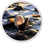 Half Shell On Ice Round Beach Towel