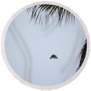 Scrub Jay In-flight Round Beach Towel