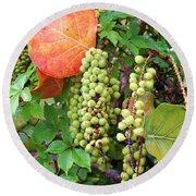Sea Grapes And Poison Ivy Round Beach Towel