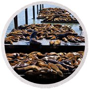Sea Lions At Pier 39  Round Beach Towel by Garry Gay