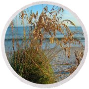 Sea Oats 1 Round Beach Towel