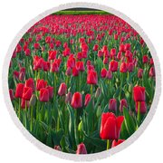 Sea Of Red Tulips Round Beach Towel by Inge Johnsson