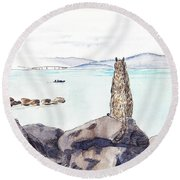Sea Squirrel Round Beach Towel