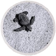 Sea Turtle In Black And White Round Beach Towel