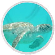 Sea Turtle Time Round Beach Towel