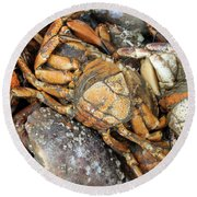 Seafood Round Beach Towel