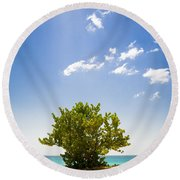 Seagrape Tree Round Beach Towel
