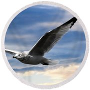 Seagull And Clock Tower Round Beach Towel by Bob Orsillo