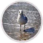Seagull At Low Tide Round Beach Towel