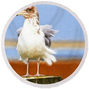 Seagull Colors Round Beach Towel