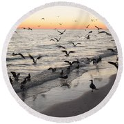 Seagulls Feasting Round Beach Towel