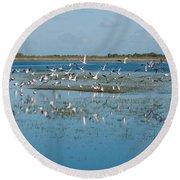 Seagull Flock Round Beach Towel