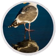 Seagull Harris Beach - Oregon Round Beach Towel