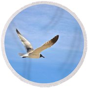 Seagull In Flight Round Beach Towel