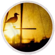 Seagull In Harbor Sunset Round Beach Towel