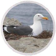 Seagull Nest Round Beach Towel