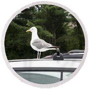 Seagull On Car Round Beach Towel