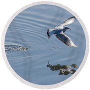 Seagull Reflection Round Beach Towel